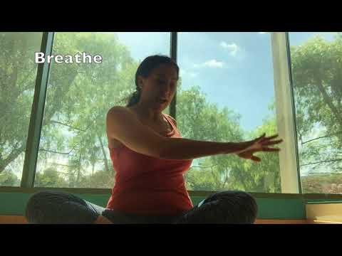 Spinal Twist Tutorial with SunLight Yoga www.sunlightyoga.com