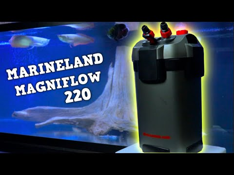 Is THIS The BEST Aquarium Filter? Marineland Magniflow 200 Canister Filter Review