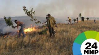 В 36 регионах России возрастет риск лесных пожаров - МИР 24