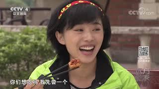 《远方的家》 20200123 美食过大年 豆腐品出幸福味| CCTV中文国际