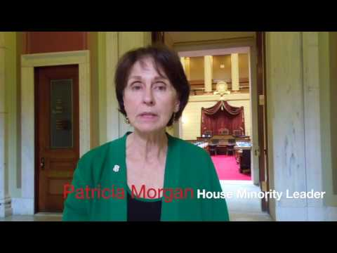 Patricia Morgan - RI House GOP cutting waste, fraud and abuse from government spending