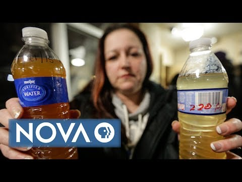 This Woman Helped Save Flint