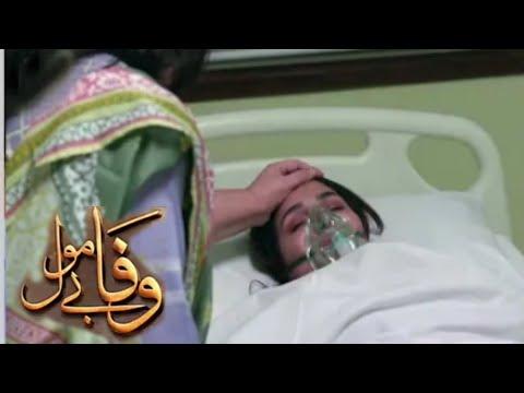Download wafa be mol Episode 50 raview | part 6 | Wafa be mol Episode 50 teaser | #dramasport