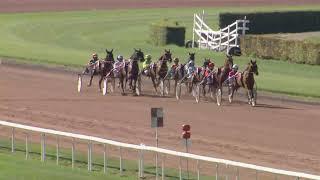 Vidéo de la course PMU PRIX DE SAINT-AUBIN