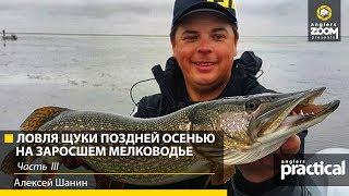 На что ловит ЩУКУ Алексей Шанин ОСЕНЬЮ? Часть 3