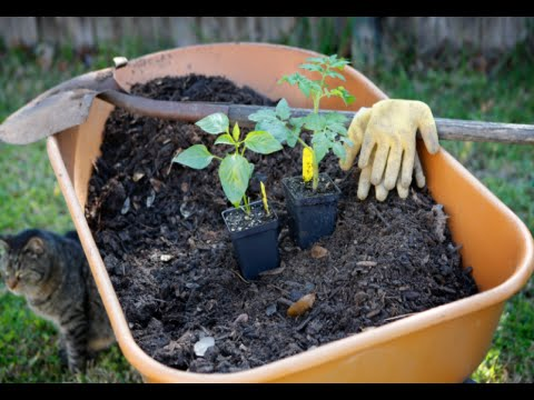 How to Make Vegetable Compost for the Garden YouTube