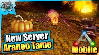 Ark Mobile| New Patreon Server/Halloween Items/How To Tame Araneo|iOS/Android Total Beginner's Guide