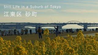 東京ローカル紀行【砂町 Sunamachi】Still Life in a Suburb of Tokyo 2016-1-14 Lumix DMC-FZ1000