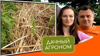 видео Сами себе агрономы