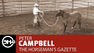 Halter Breaking Part 3 with Peter Campbell