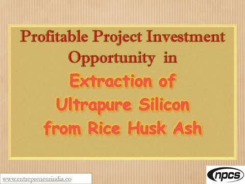 Profitable Project Investment Opportunity in Extraction of Ultrapure Silicon from Rice Husk Ash