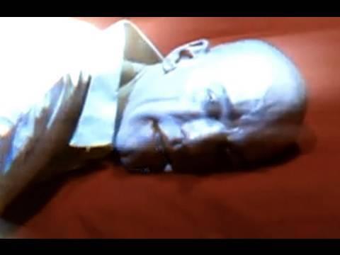 R.E.M. - Lotus (Official Music Video)
