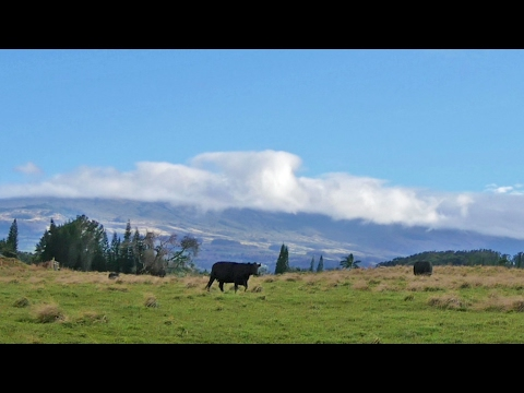 Kona wind time-lapse on East Maui
