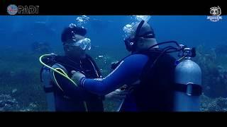 스쿠버디이빙의 시작 ㅣ 오픈워터교육 ㅣ 코브라다이브 입문 [스쿠버다이빙/scubadiving/코브라다이브/오픈워터 ]hwang ow