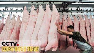 《中国财经报道》 20190919 17:00| CCTV财经