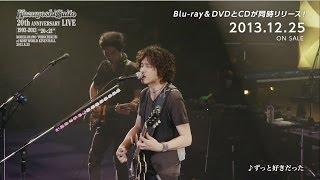 斉藤和義 20th Anniversary Live 1993-2013