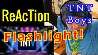 Baixar Ellis Reacts #123 // Classical Guitarist Reacts to TNT Boys - Flashlight // TNT Versions //