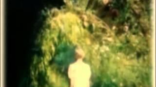 SILVANIA: Acuarelas Spirales y Elefantes- 1994