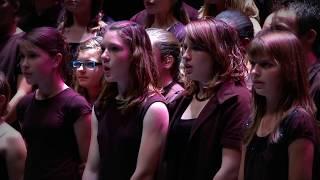 Le courage des oiseaux - Dominique A / chorale du Collège REVERDY (Sablé sur Sarthe)