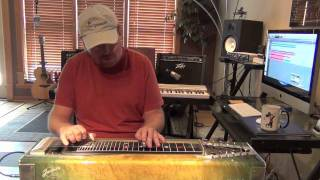 Vincent (Starry Starry Night) Steel Guitar by Zane King