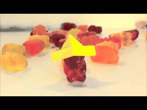 Harlem Shake: Surf Sweets Organic Gummy Bear Edition