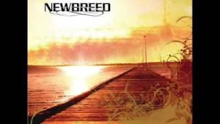 NewBreed - Child of the Sun