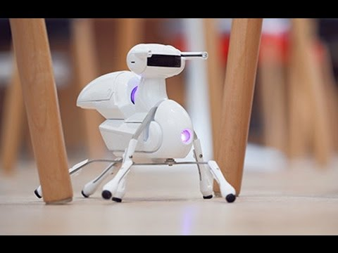 4 Smart Toys You Didn't know Existed