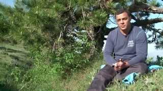 Мир дикой природы. Горы Крыма