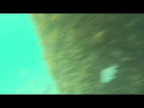 Sata Maria's, Cape Verde underwater