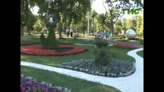 На этих выходных в Самаре пройдет городской Фестиваль цветов