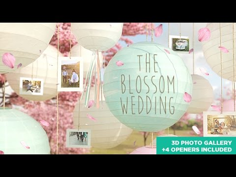 the blossom wedding photo gallery slideshow after effects template not free youtube. Black Bedroom Furniture Sets. Home Design Ideas