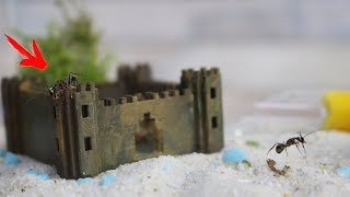 Meine Ameisen bekommen eine Minecraft Burg aus dem 3D Drucker