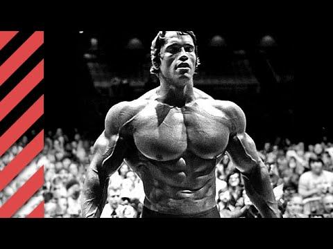 Arnold Schwarzenegger Total Recall. Seine Erfolge und ...