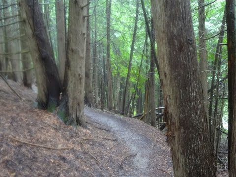 Palgrave Forest and Wildlife Area (just North of Albion Hills) Ontario Mountain Biking Trail