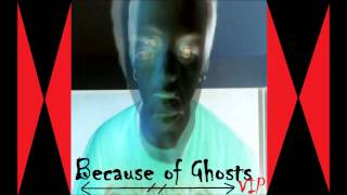 Because of Ghosts (VIP) [Original Song]