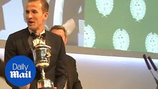 PFA Awards 2015: Harry Kane wins Young Player of the Year - Daily Mail