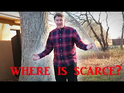5 Youtubers Who Mysteriously Disappeared From YOUTUBE (WHERE IS SCARCE?)