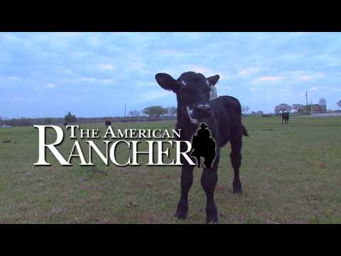 The American Rancher featuring Tru Test Livestock Scales April 2017