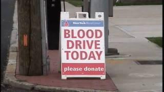 Tom Cilmi 1st Annual Blood Drive