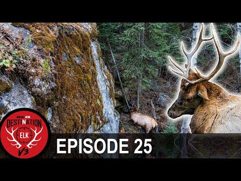 """An Elk Hunting """"Cliffhanger""""… (Destination Elk V3 – Episode 25)"""