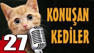 Konuşan Kediler 27 - En Komik Kedi Videoları