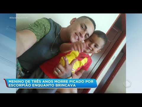 Menino de 3 anos morre picado por escorpião enquanto brincava