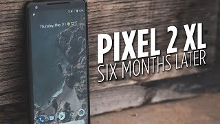 Considering the Pixel 2 XL? How does it stand 6 months after it's r...