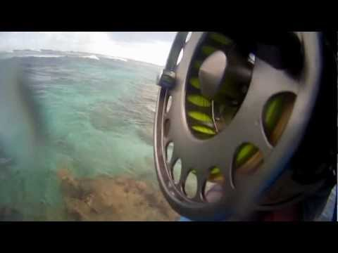 Bird Island Flyfishing Seychelles 11-2012, GT´s, Bluefin Travelly`s and a Big Snapper
