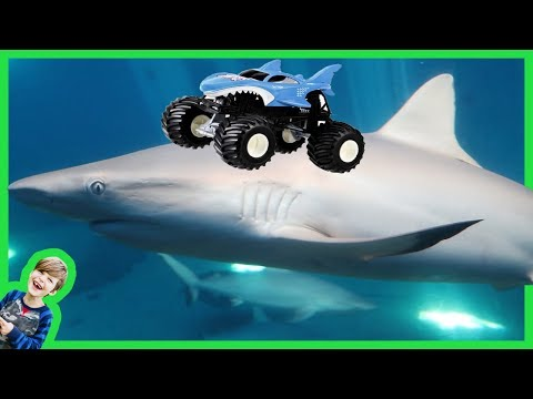 AXEL SHOW Monster Trucks for Children Visit the Aquarium wit