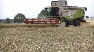 Żniwa,Big Harvest in Europe  ,урожай 2015 Ukraine Claas Lexion 670,550,480 🇺🇦🇺🇦
