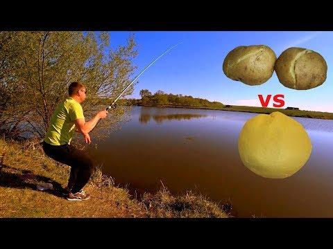 Картошка, картошка с маслом или мастырка!? Рыбалка на карася