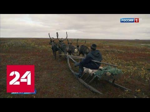 Чем Ненецкий округ готов удивить туристов - Россия 24