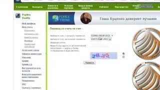 Инструкция по инвестированию в ПАММ-индексы Форекс-Тренд