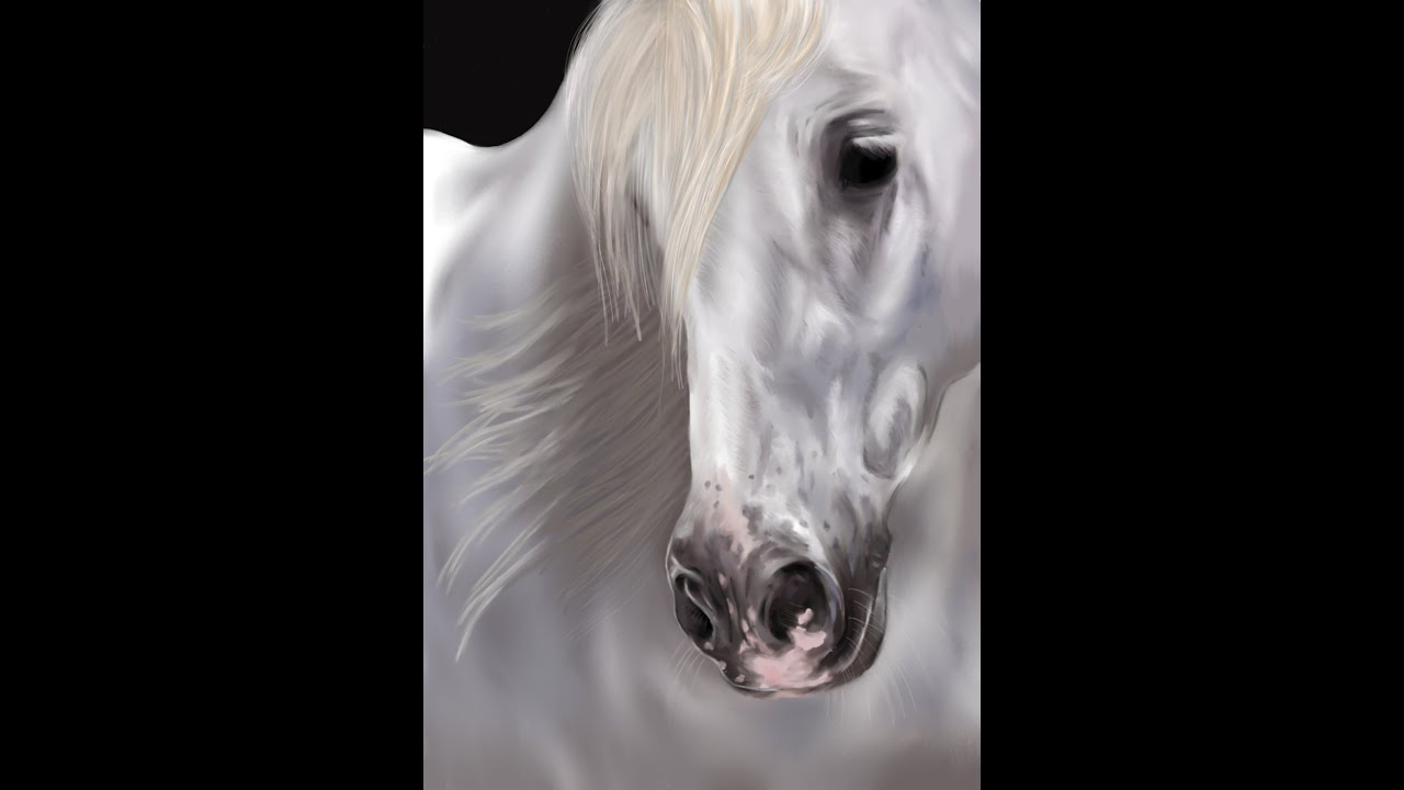 How To Draw Realistic Horses Paint - Exploring Mars
